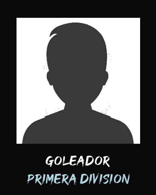 Mejor goleador Primera 2 Anual 2019